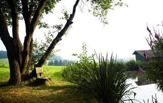 Natur und Ruhe im Landgut